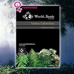 WORLD OF SEEDS - Sativa Collection